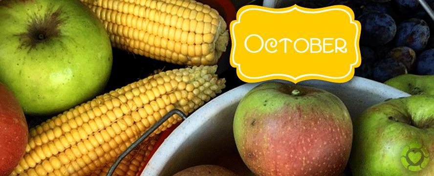 Seasonal Food October   ecogreenlove