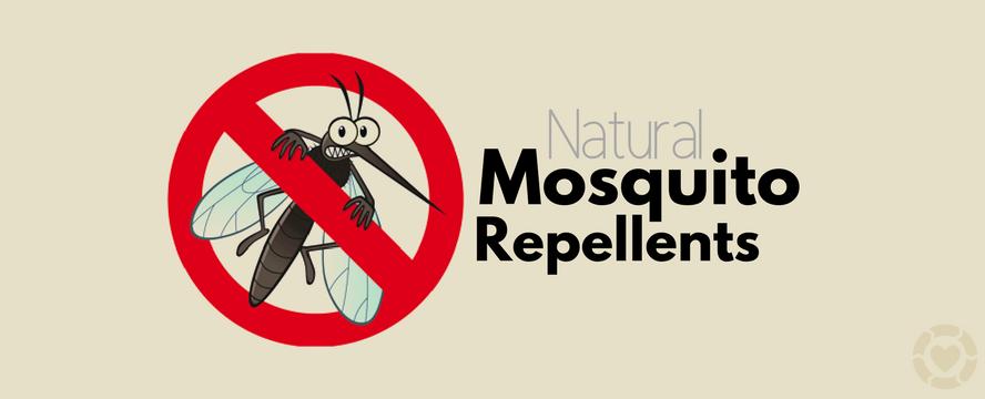 Natural Mosquito Repellents | ecogreenlove