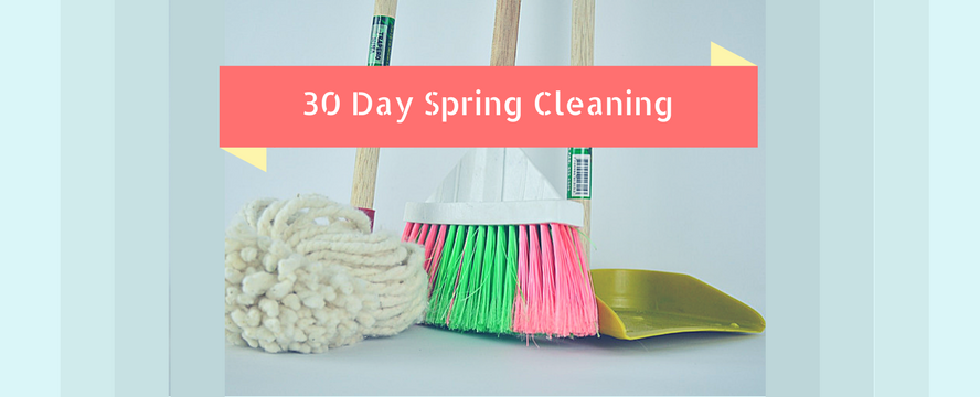 Spring Cleaning Guides & Tips [Program] | ecogreenlove