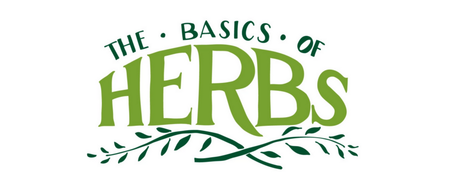 The Basics of Herbs [Illustration] | ecogreenlove