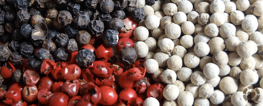 All about Peppercorns: Types & Tips | ecogreenlove