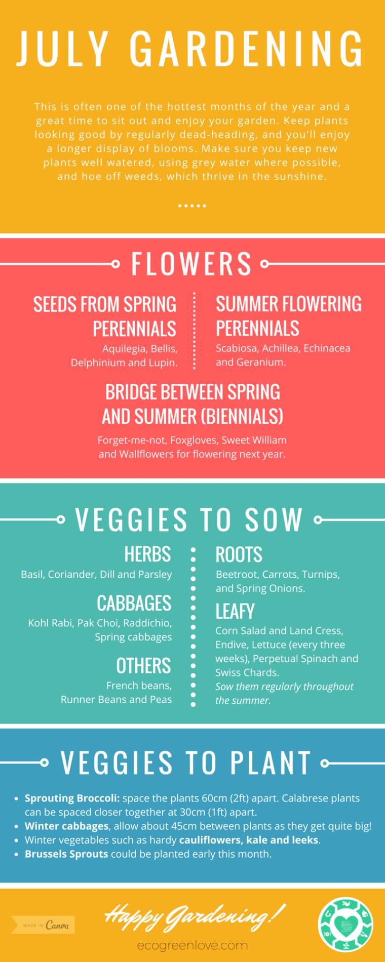 July seasonal gardening [Infographic] | ecogreenlove