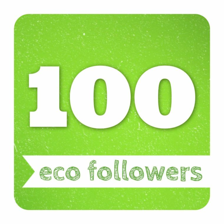 100_ecogreenlove_followers