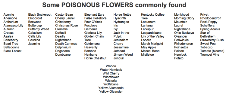 Incomplete list of Poisonous flowers
