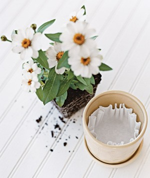Place one filter over a flowerpot's drainage hole to prevent soil from leaking out.