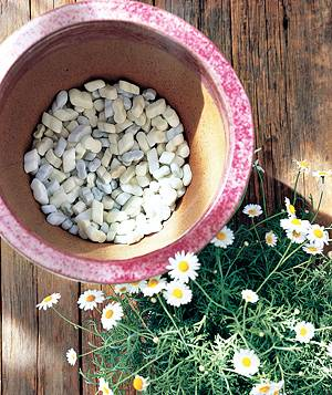 Supplement potting mix by filling the bottom of a planter with leftover packing peanuts. They are lightweight and improve drainage, which promotes healthy roots.