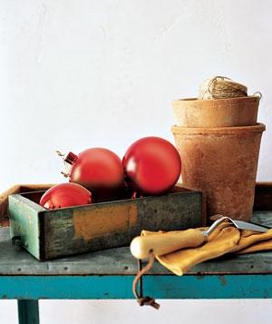 Gardening New Uses for Old Things | ecogreenlove