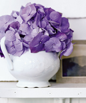 A sweet flower vessel. Your (topless) sugar bowl is just the right size to hold a single head of hydrangea or a half-dozen sweetheart roses. Crop the stems very short so the bouquet is tight, full and spilling over the sides.