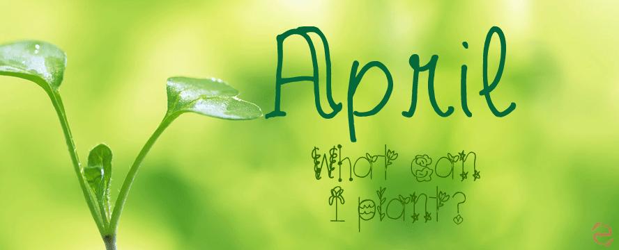 Gardening April Infographic | ecogreenlove