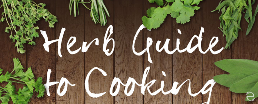 Herb Guide [Infographic] | ecogreenlove