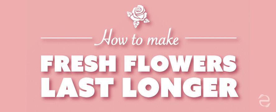 How to Make Fresh Flowers Last Longer [Infographic]