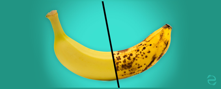 Organic vs. Conventional Fruits | ecogreenlove