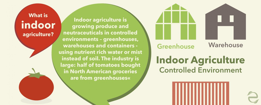 The Future of Agriculture is Indoors [Infographic] | ecogreenlove