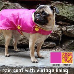 Winter Dog Coat • Reusing Umbrellas | ecogreenlove