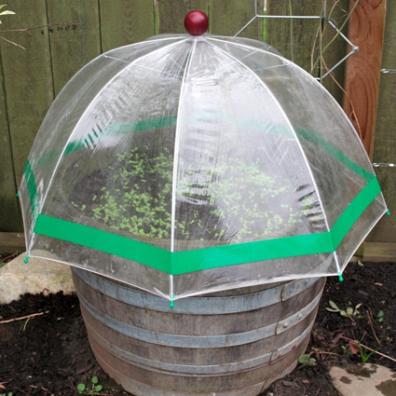 Umbrella greenhouse • Reusing Umbrellas   ecogreenlove