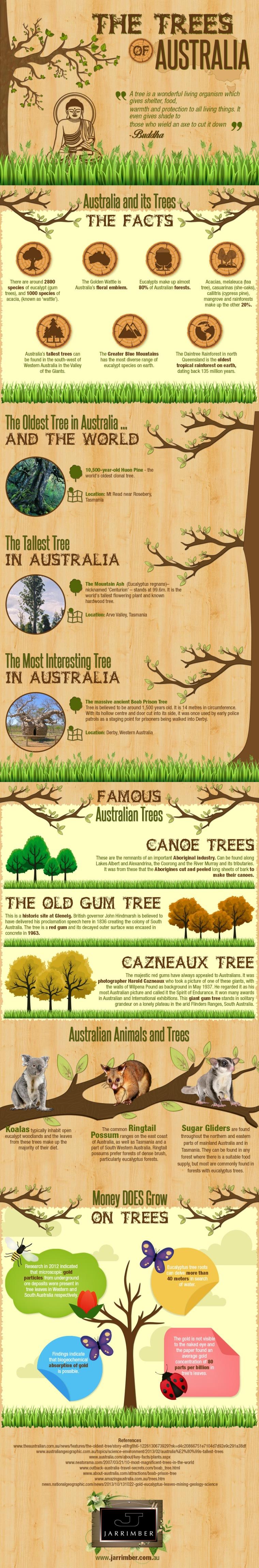 Trees of Australia [Infographic]   ecogreenlove