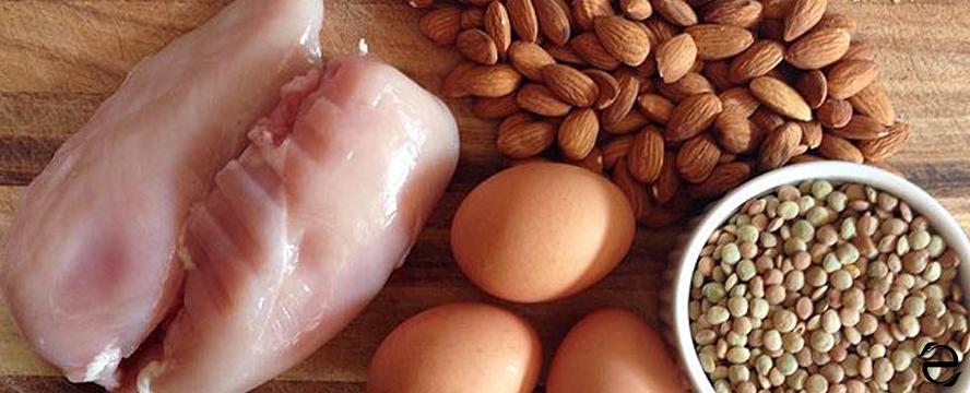 High Protein Rich Foods [Infographic] | ecogreenlove