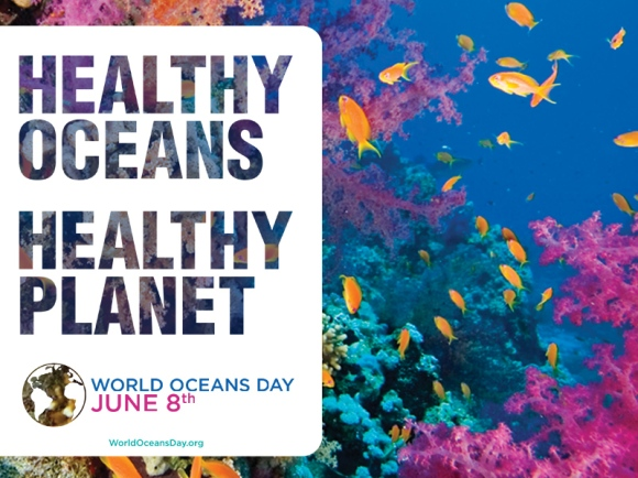 World Ocean's Day | ecogreenlove