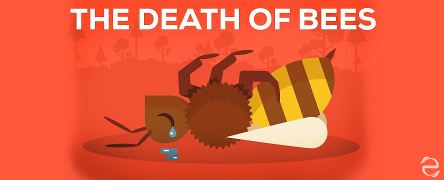 The Death of Bees Explained [Video]