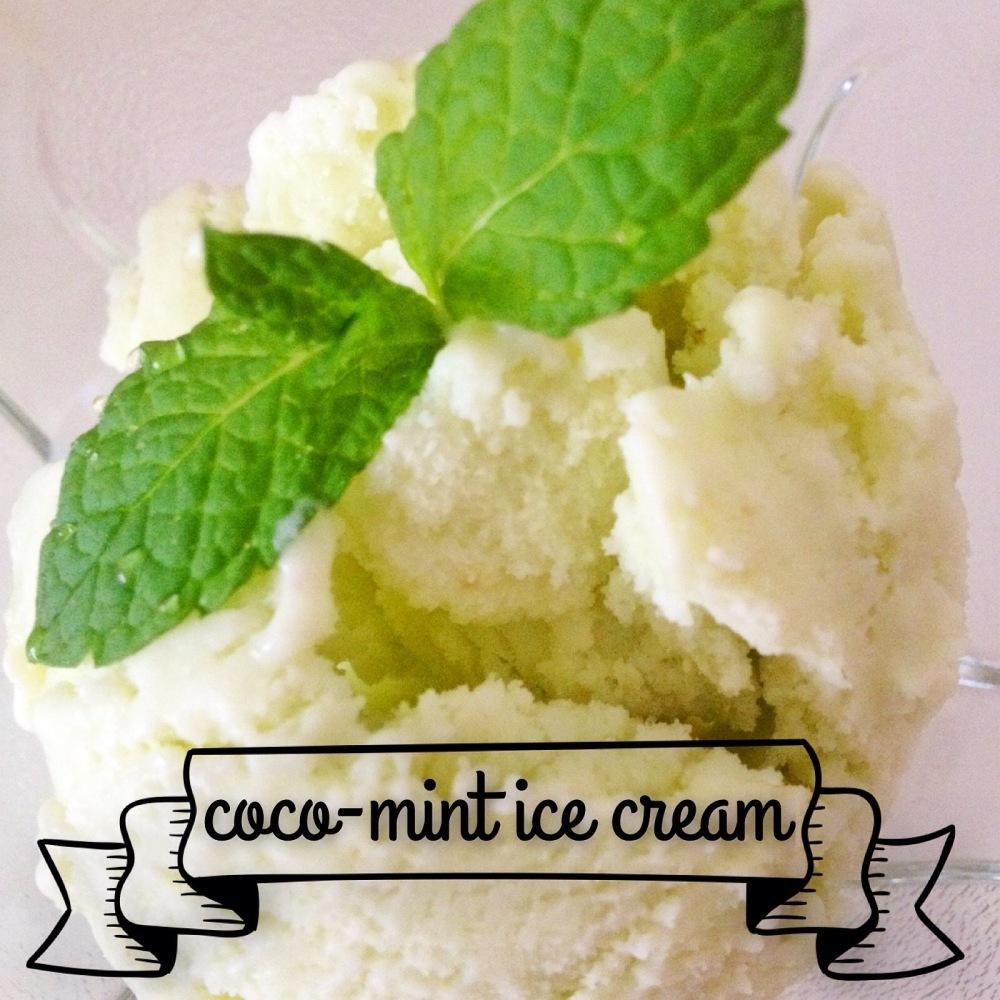 Recipe: Vegan Coco-Mint ice cream (1/2)