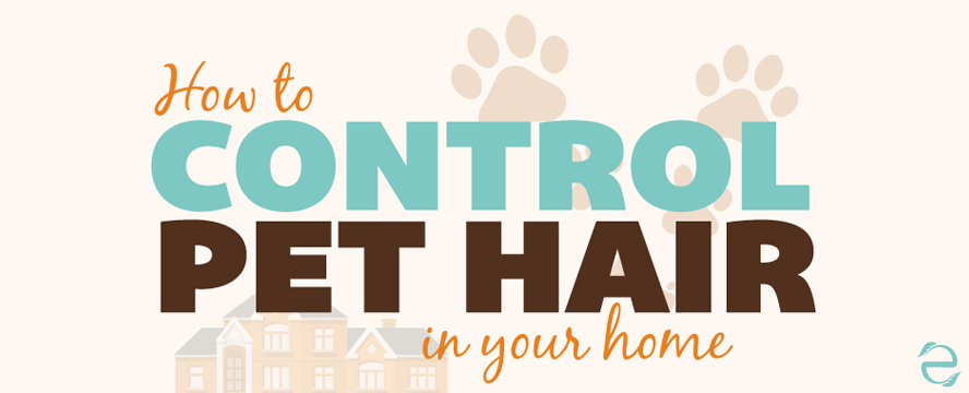 How to control Pet Hair at Home [Infographic] | ecogreenlove