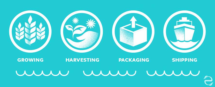 The Growing Global Water Footprint [Infographic] | ecogreenlove
