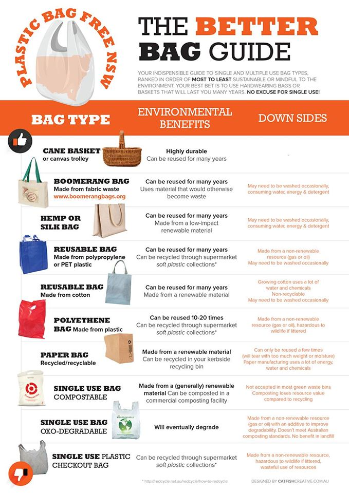 The Most And Least Eco Friendly Shopping Bags Infographic