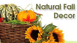 DIY Fall Decorations with Nature | ecogreenlove