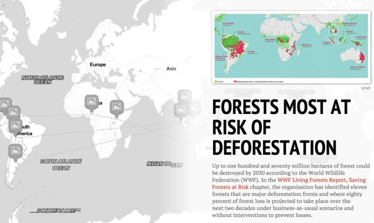 Forests most at Risk of Deforestation [Interactive StoryMap] | ecogreenlove