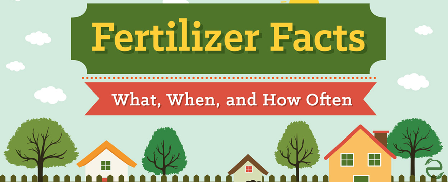 Fertilizer Facts: What, When and How Often [Infographic] | ecogreenlove