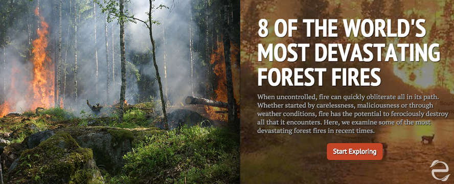 8 of the Most Devastating Forest Fires in the World [Interactive StoryMap] | ecogreenlove