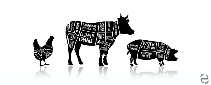 Green Documentaries: Cowspiracy | ecogreenlove