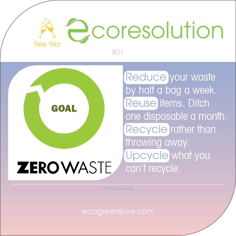 Eco resolutions (Zero Waste) | ecogreenlove