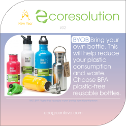 Eco resolutions (BYOB) | ecogreenlove