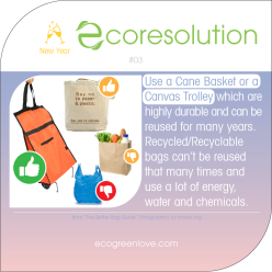 Eco resolutions (no plastic) | ecogreenlove