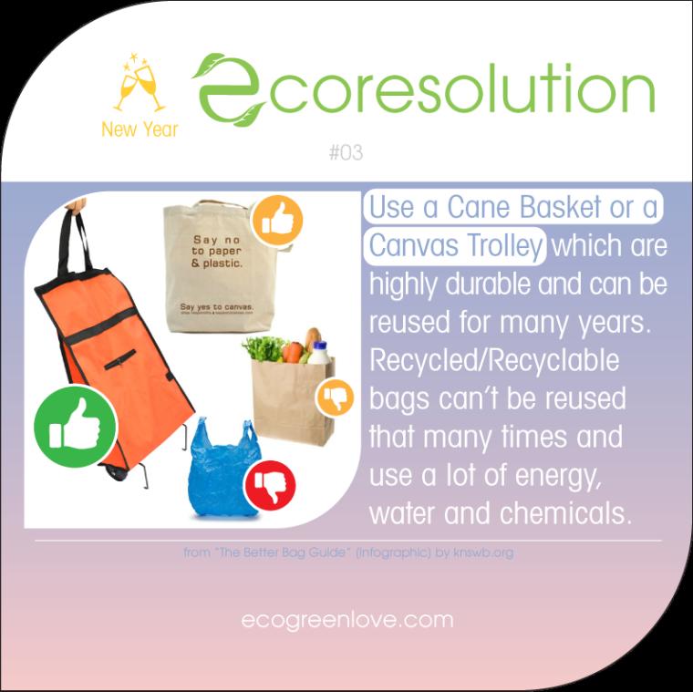 Eco resolutions (no plastic) | ecogreenlove