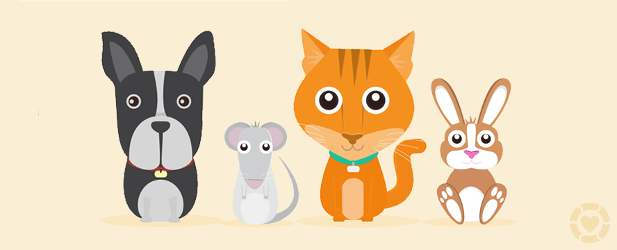 What NOT to feed your Pets [Infographic] | ecogreenlove