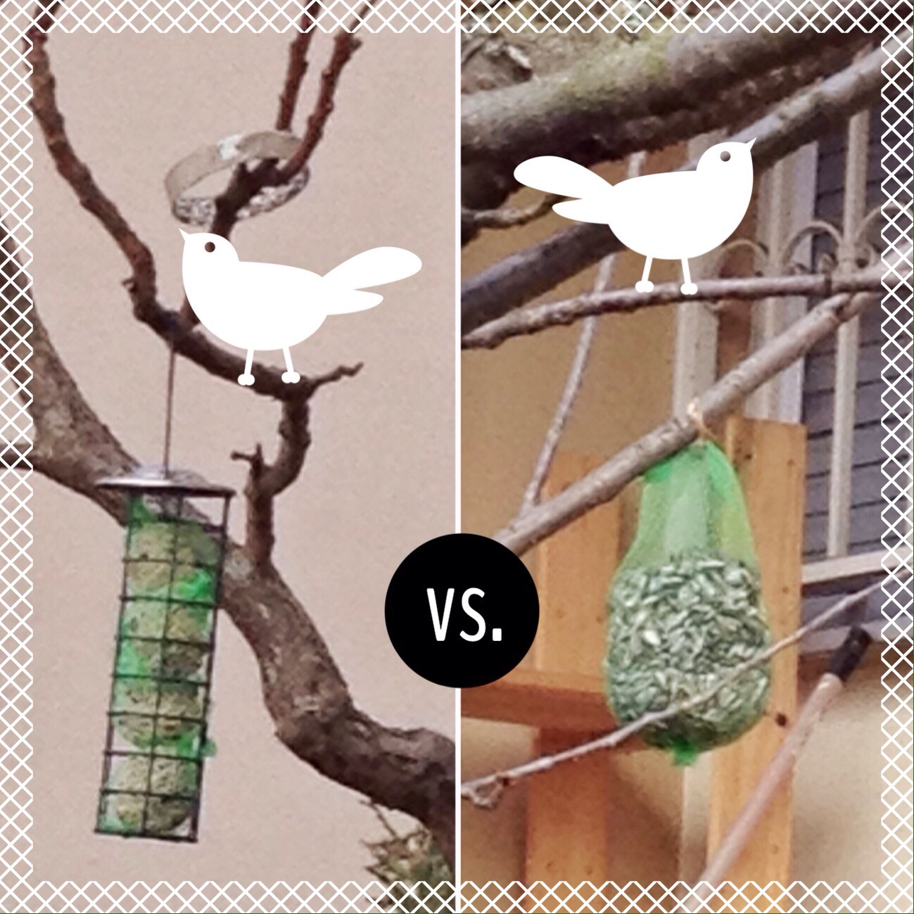 Birdfeeders… reusable but still plastic | ecogreenlove