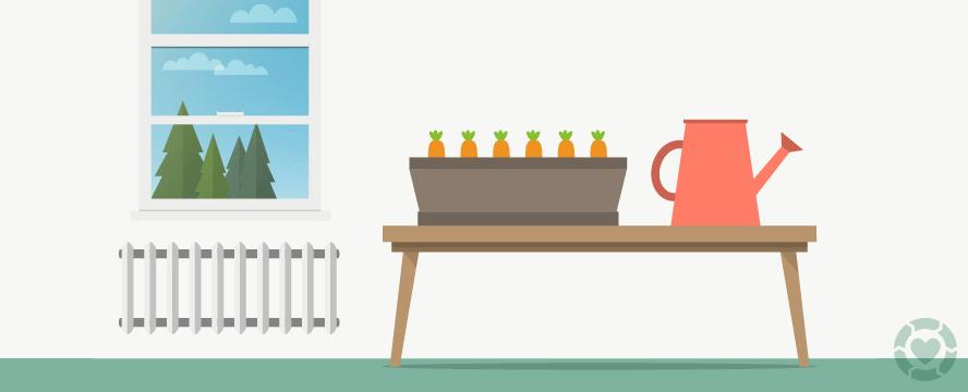 Edible Plants to Grow Indoors [Infographic] | ecogreenlove