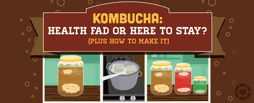 Kombucha [Infographic + Recipe] | ecogreenlove