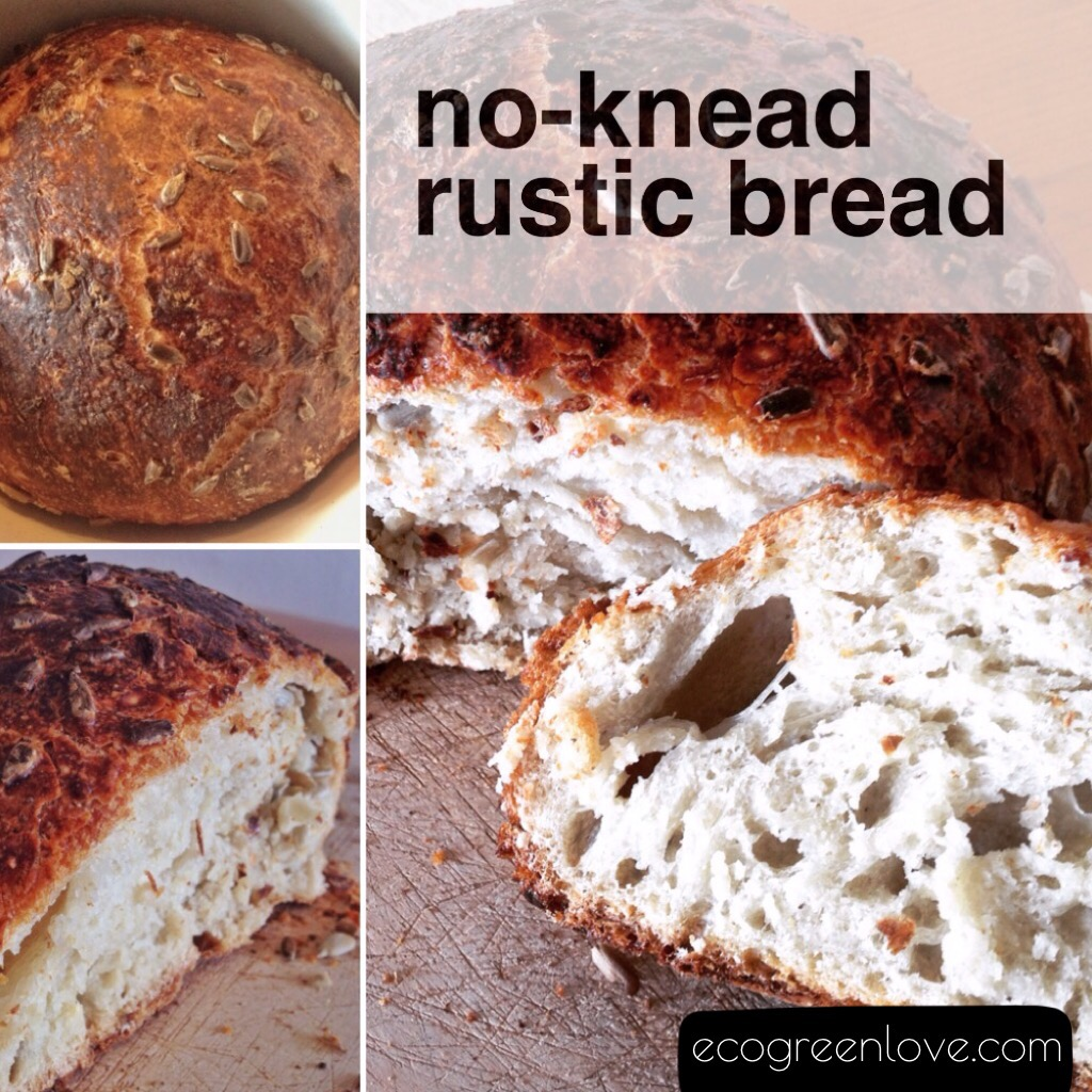 Recipe: No-knead Rustic Bread | ecogreenlove
