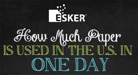 How much Paper is used in the U.S. in 1 Day [Infographic] | ecogreenlove