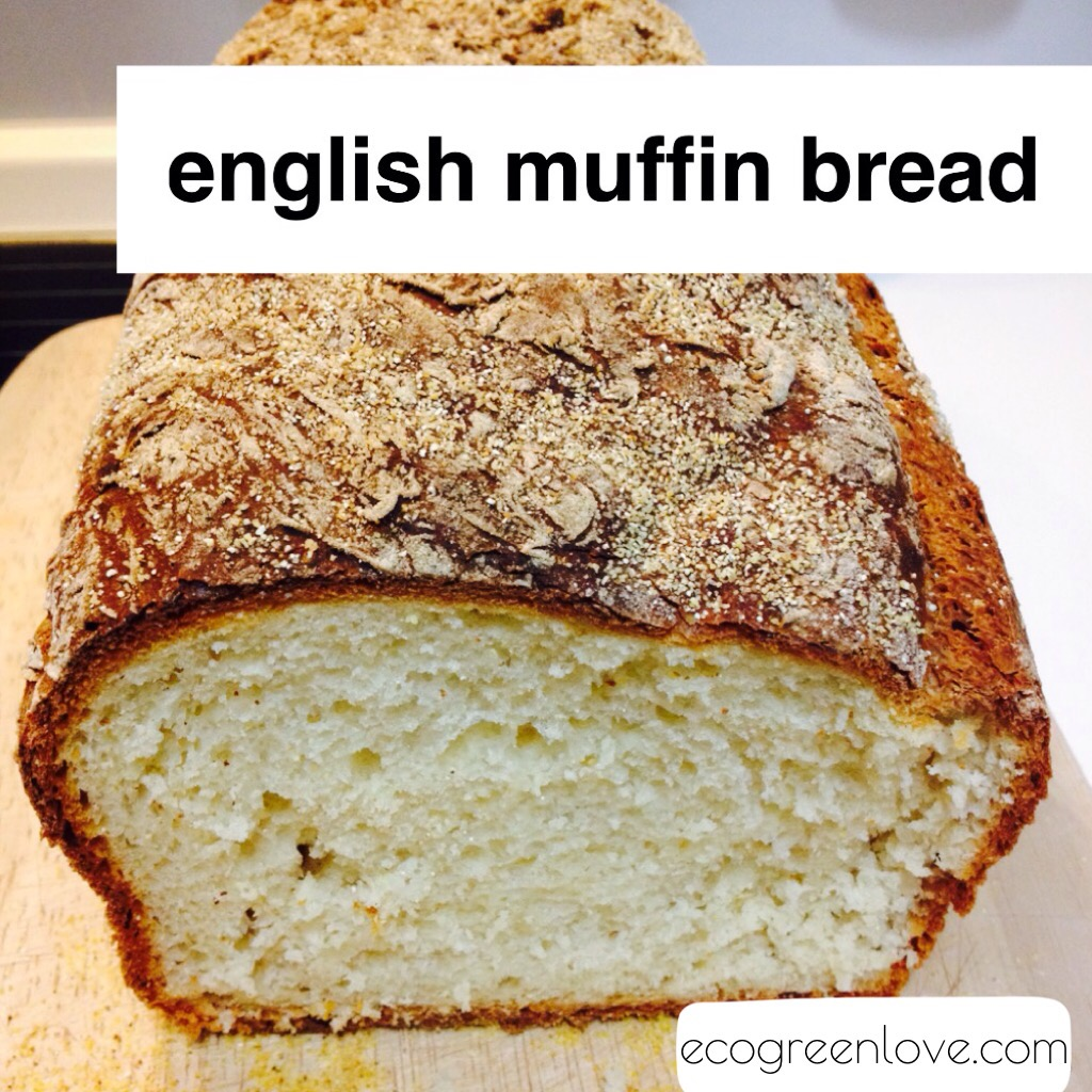 Recipe: English Muffin Bread | ecogreenlove