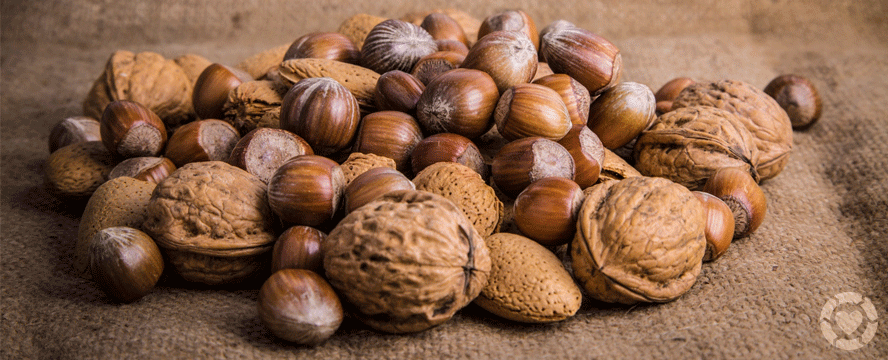 The ultimate Guide to Nuts [Infographic] | ecogreenlove