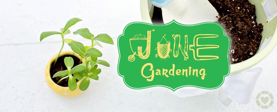Gardening in June [Infographic] | ecogreenlove