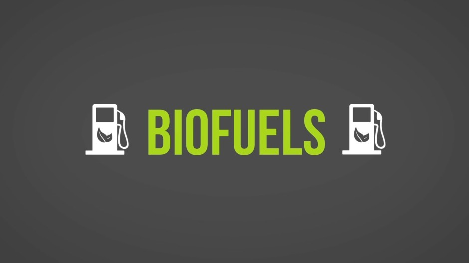 Carbon Neutral, Biofuels + Effects [Videos] | ecogreenlove
