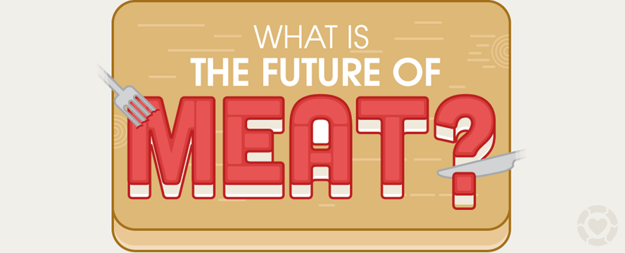 What is the Future of Meat? [Infographic] | ecogreenlove