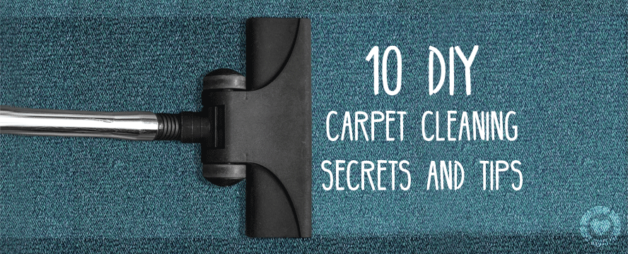 DIY Carpet Cleaning Secrets & Tips (Infographic) | ecogreenlove