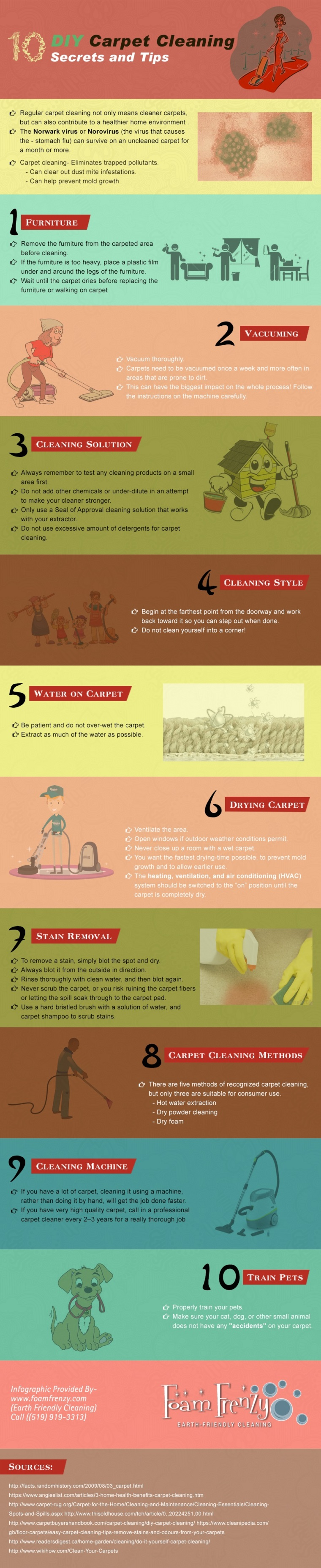 DIY Carpet Cleaning Secrets & Tips (Infographic) | ecogreenlove