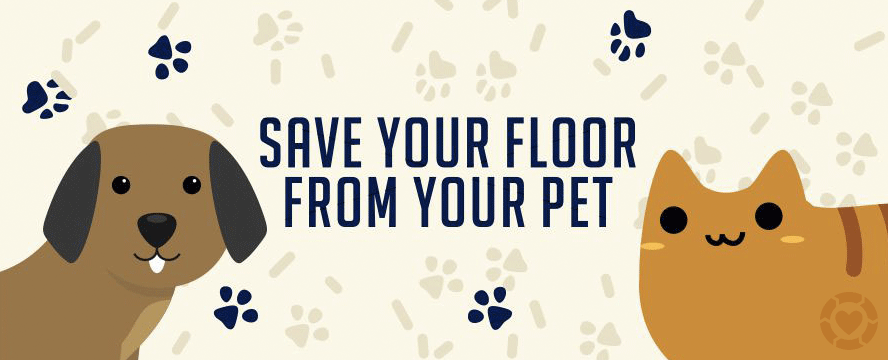 Save your floor from your pets [Infographic] | ecogreenlove